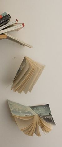 Fallingbook