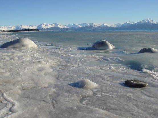 Iceshore